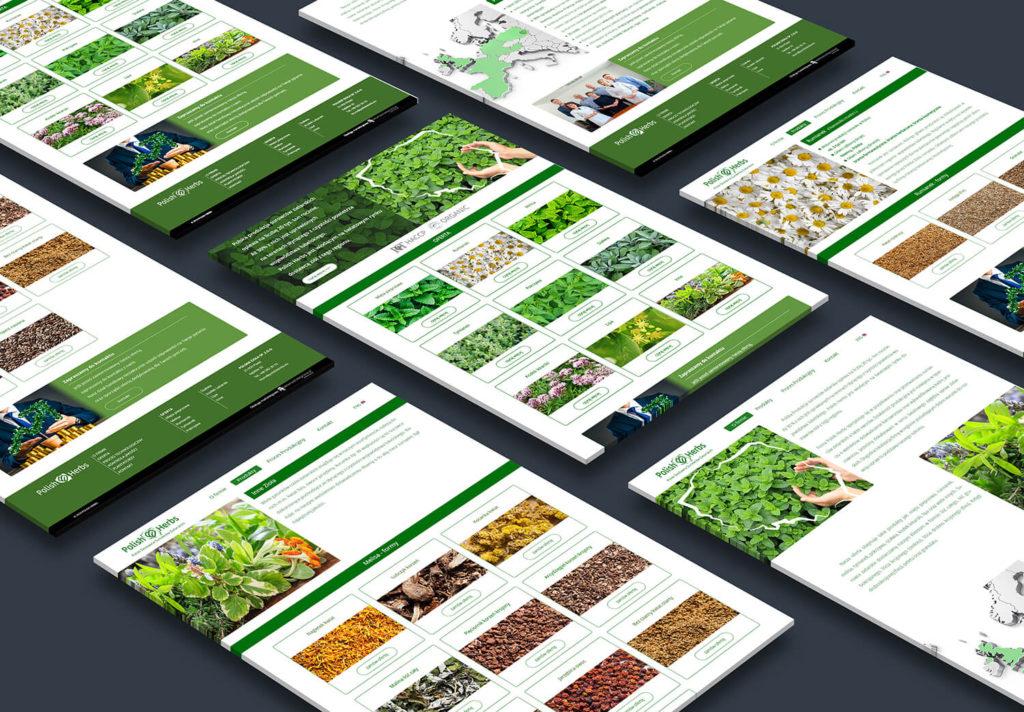 02 Polish herbs www